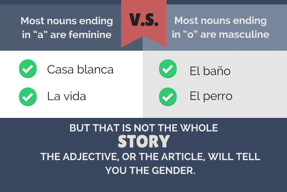 Spanish masculine and feminine words tips for learning Spanish